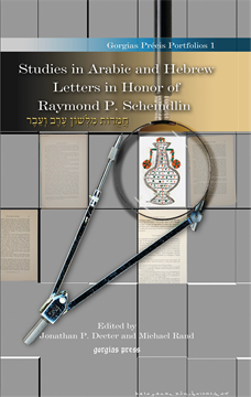 Picture of Studies in Arabic and Hebrew Letters in Honor of Raymond P. Scheindlin